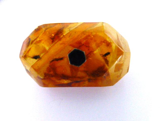 Amber Pin Shank button