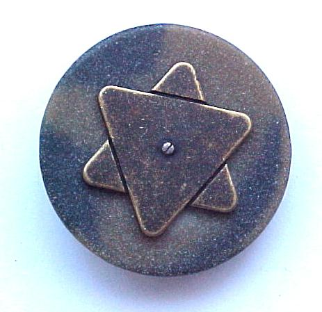 Brass Star and Tortoiseshell button (No.00287)