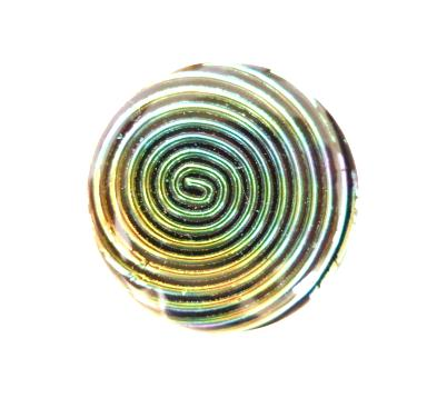 Rainbow Lustre Black button (No. 00293)