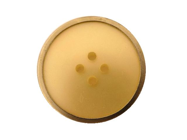 Brass Edge Rainbow Pearl-effect button (no. 00847)